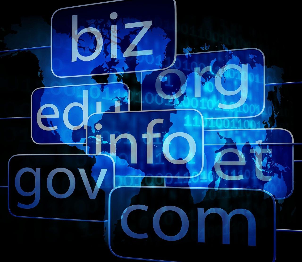 domeny-internetowej